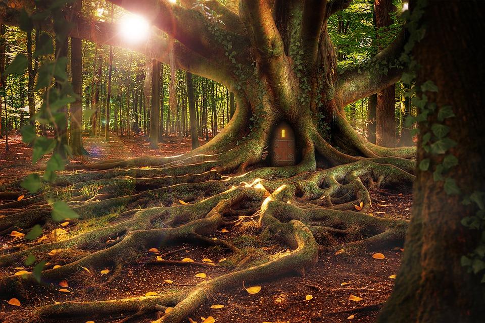 treehouse vr