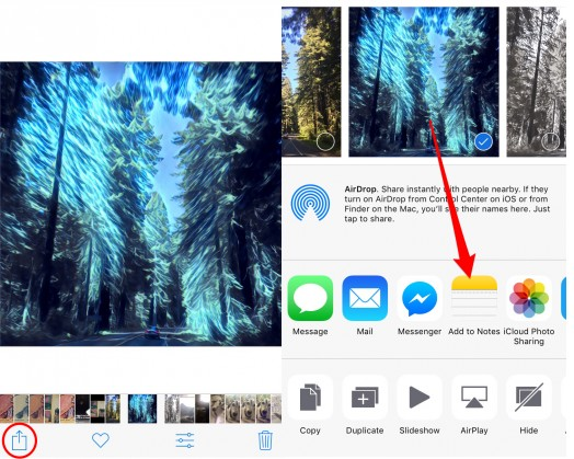 How to Hide Pictures on iPhone