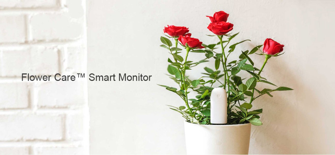 Xiamo plant monitor