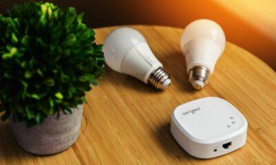 sengled smart led light bulb