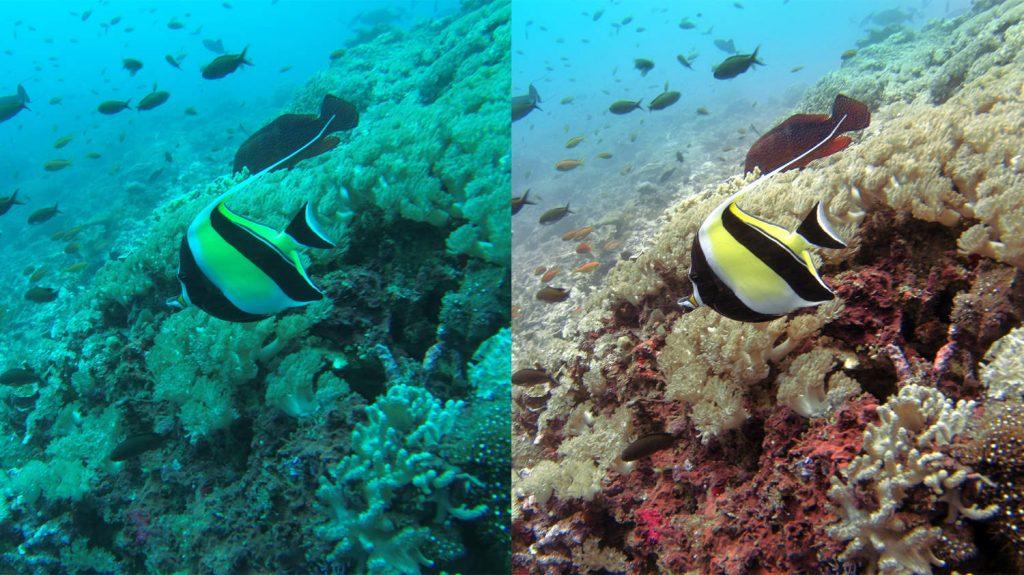 navatics underwater drone