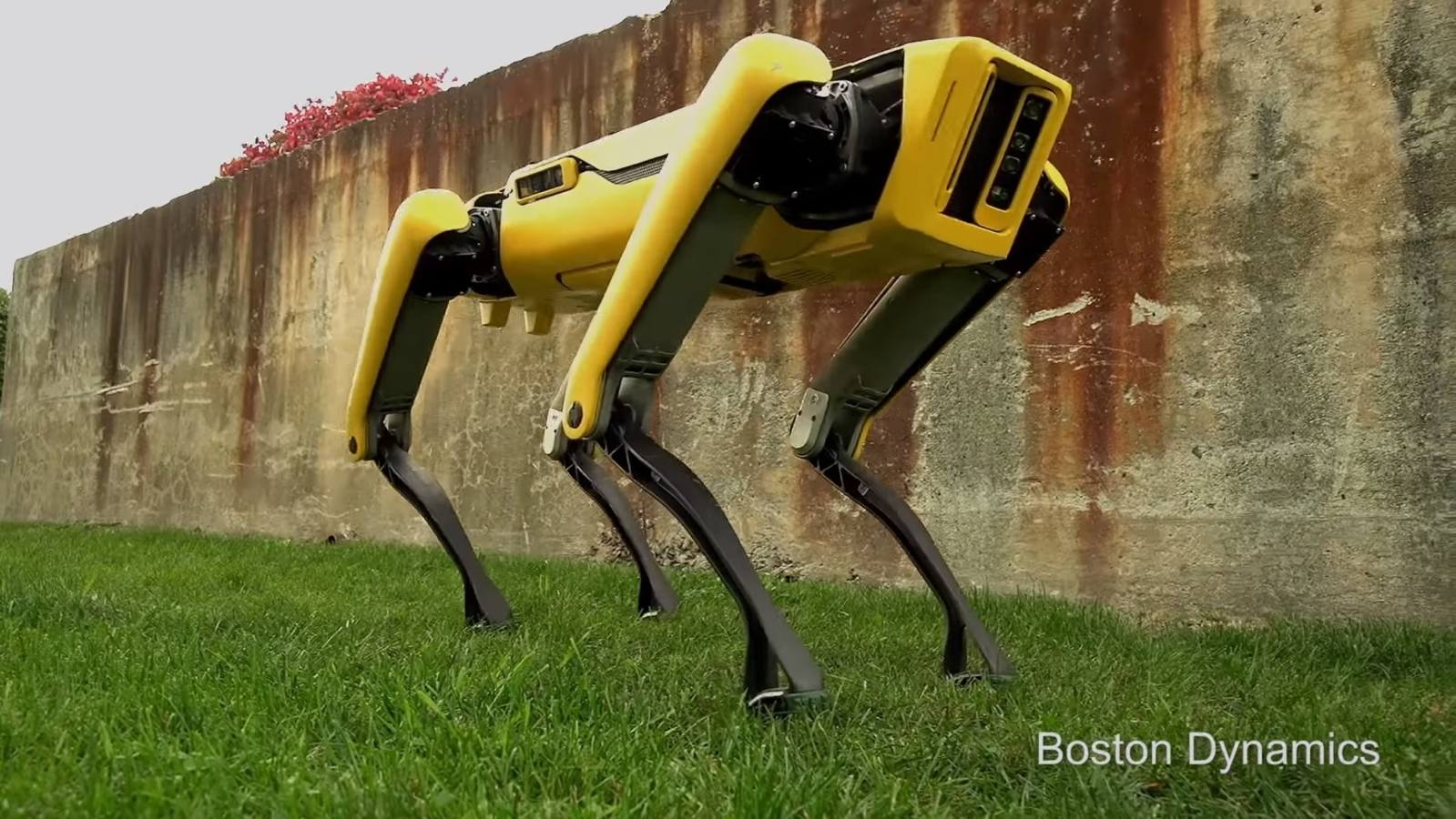 boston dynamics spot mini