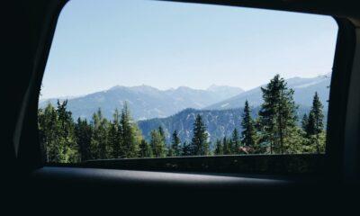 car window ford