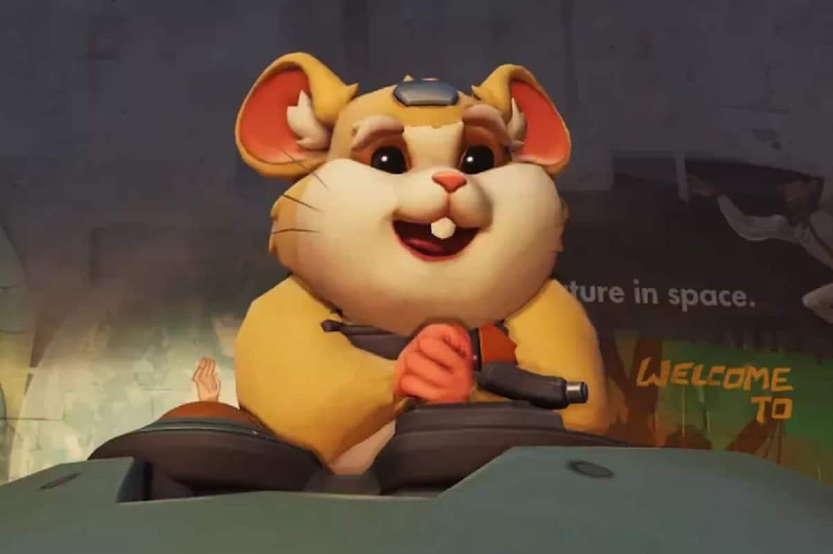Hamster porn pics