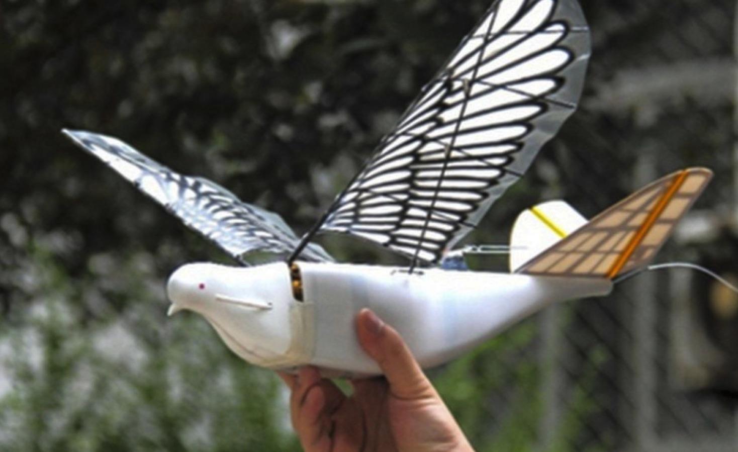 robotic bird drone surveillance drones