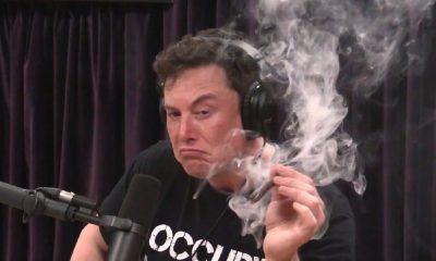 elon musk smoking weed while employees quit
