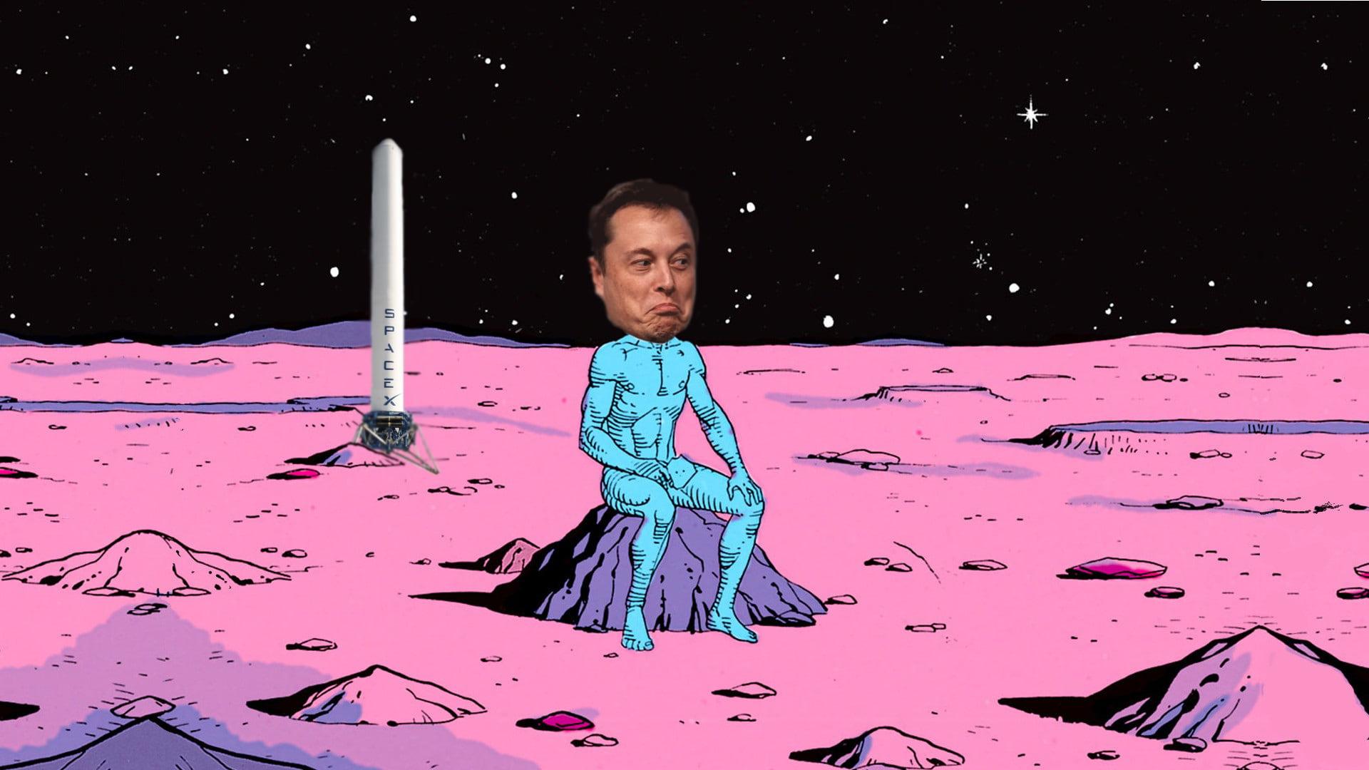 elon musk goes to mars