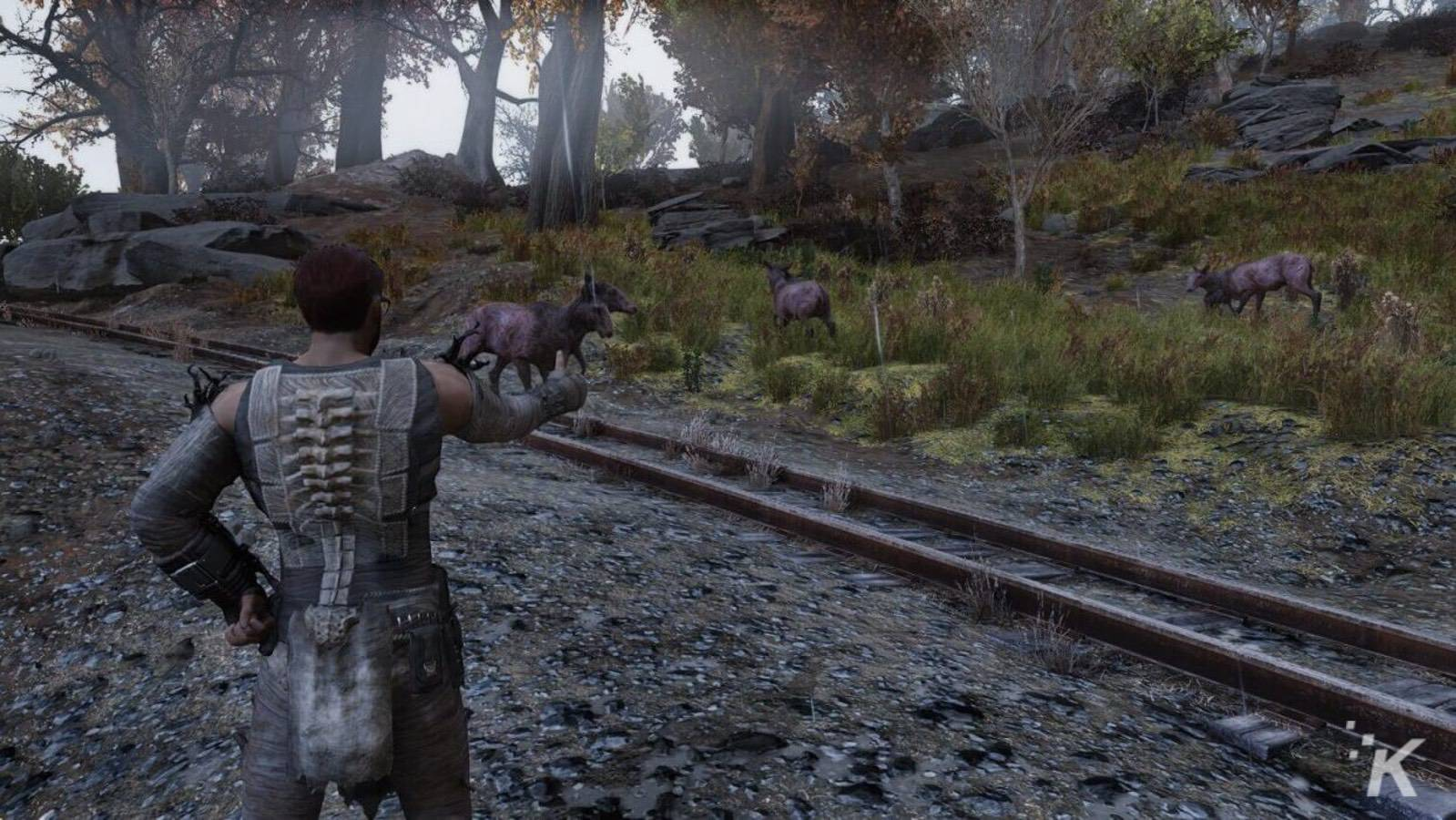fallout 76 animals