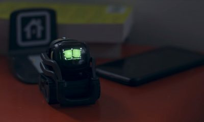 anko vector robot on desk