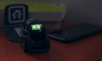 anko vector robot on desk