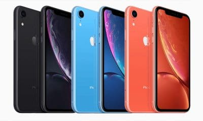 apple iphone xr models showing different color options