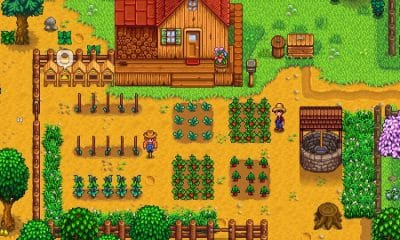 stardew valley farmer