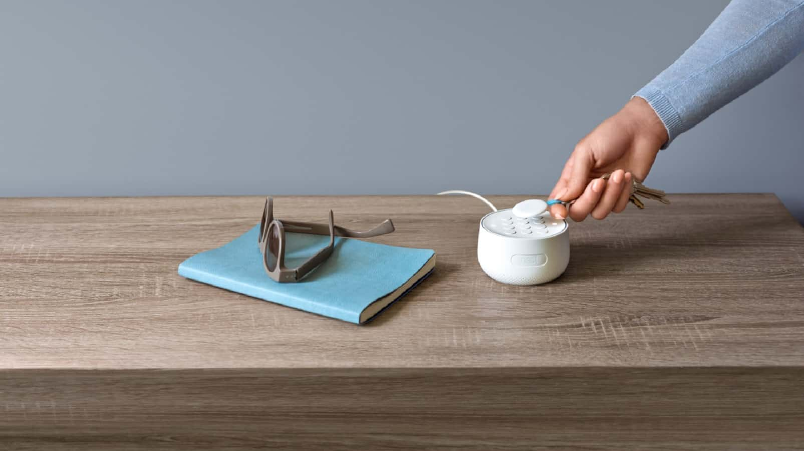 nest guard on table being used