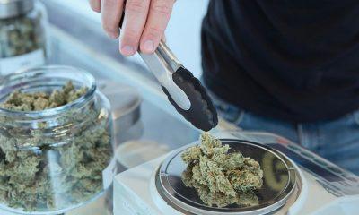 marijuana sellers on google play