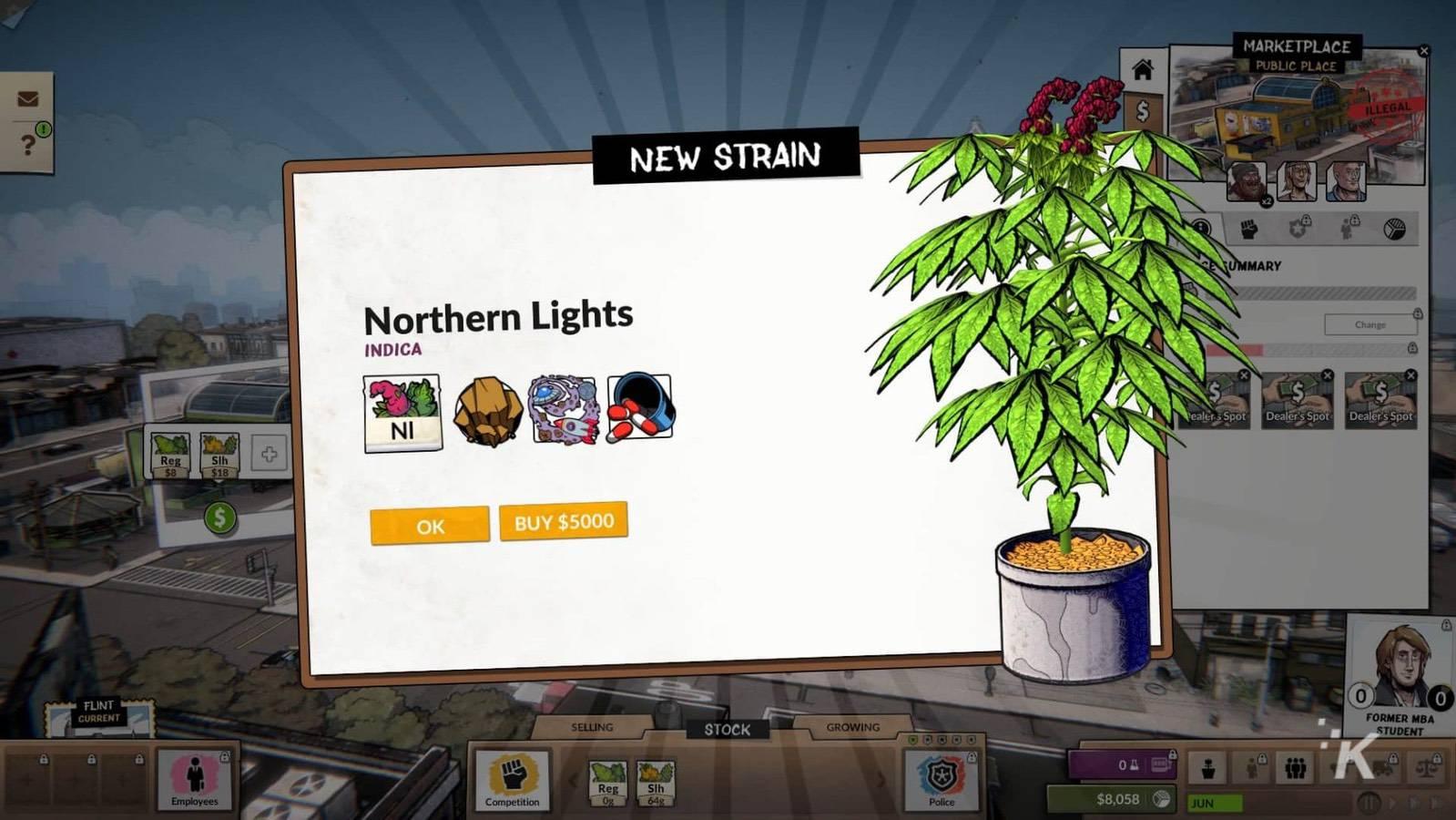 weedcraft inc northen lights