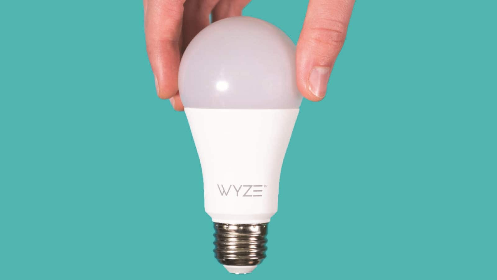 wyze smart light bulb in fingers