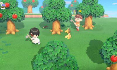 animal crossing new horizons gameplay e3 2019