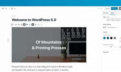 wordpress 5.0 screen