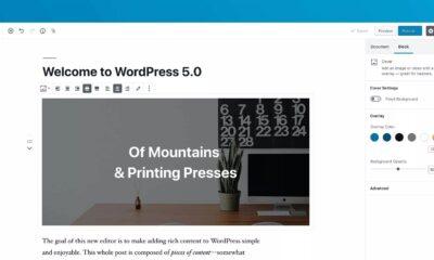 wordpress 5.0 screen