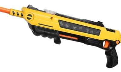 salt gun for flies