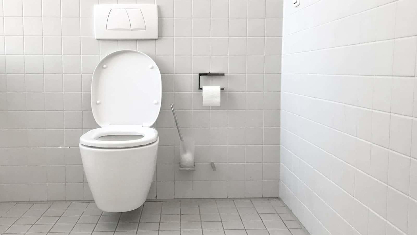 poop in a toilet