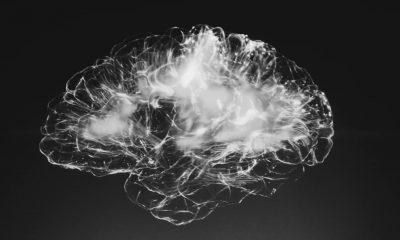 quantum brain in black and grey