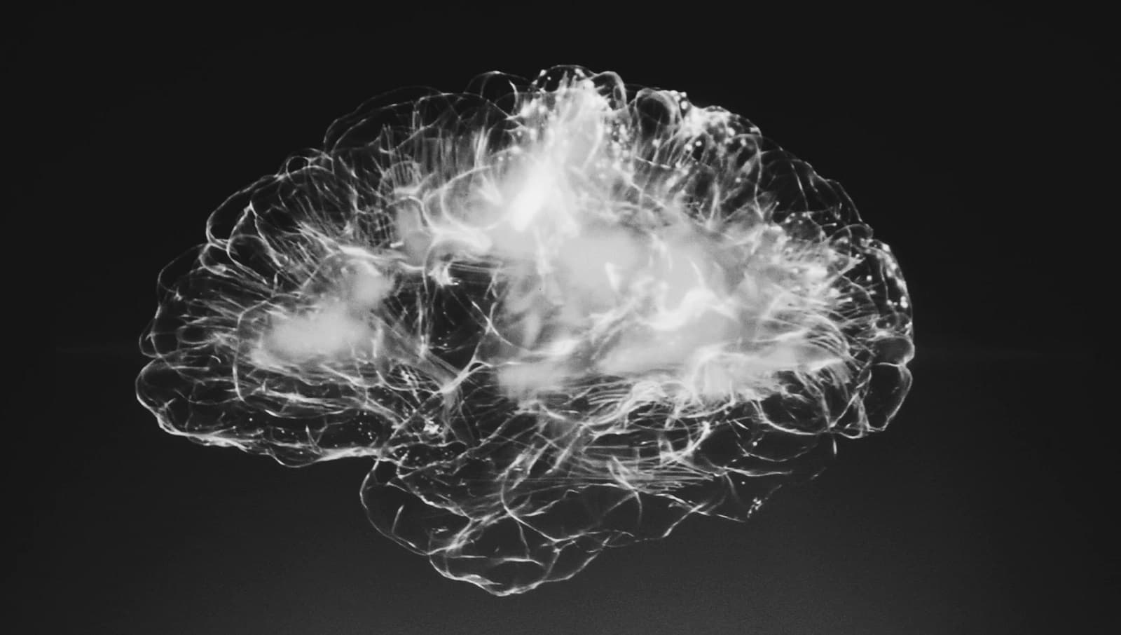 quantum brain in black and grey