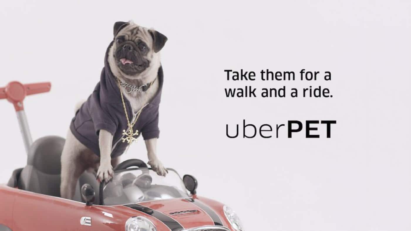 uberpet service