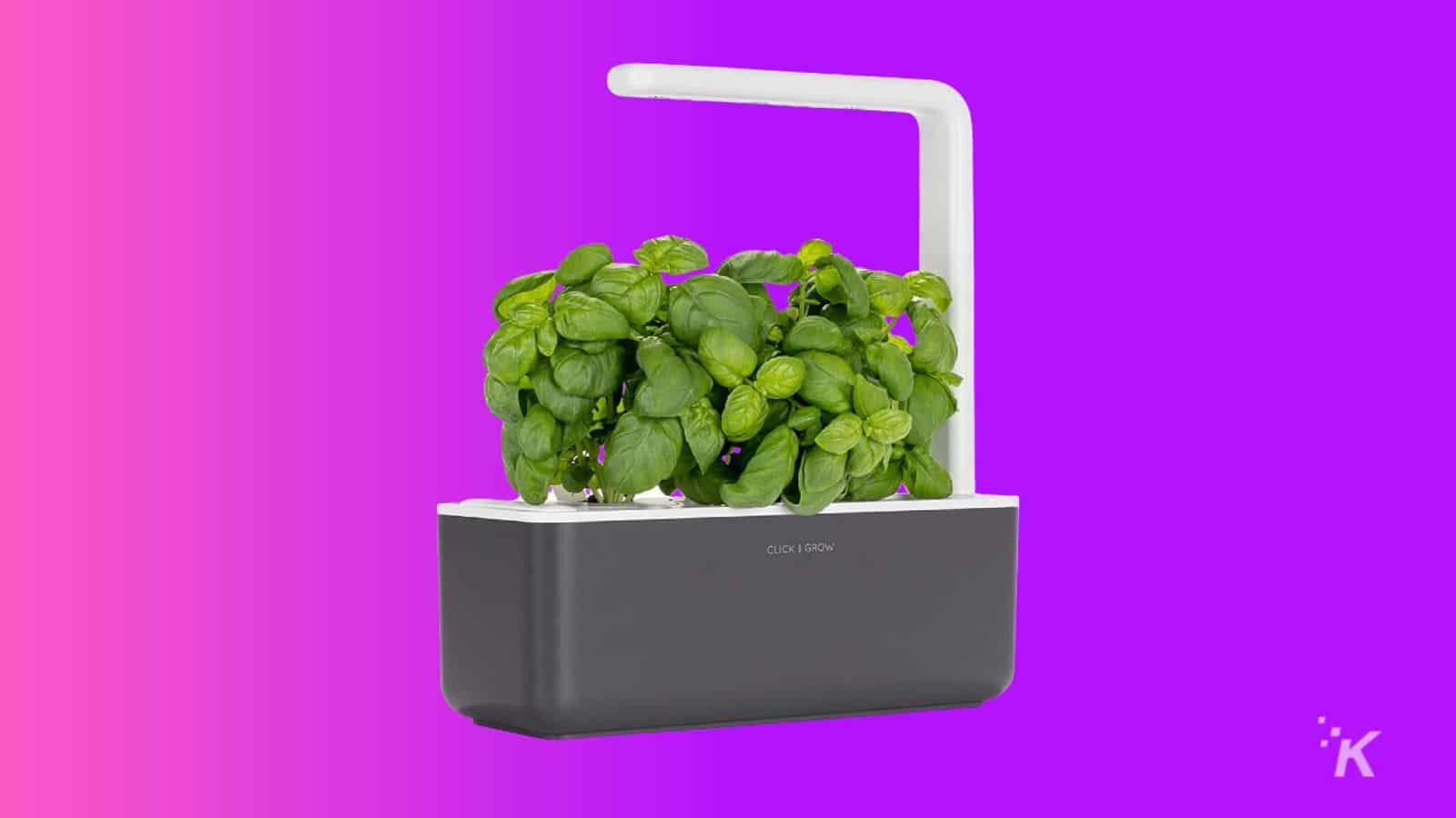 click grow smart gardening kit gift guide under 100