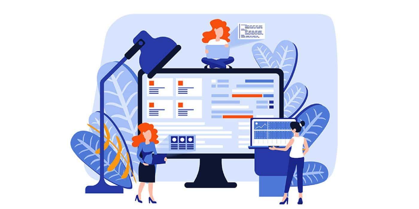 web design developer bundle