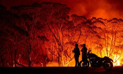 bushfire detection system