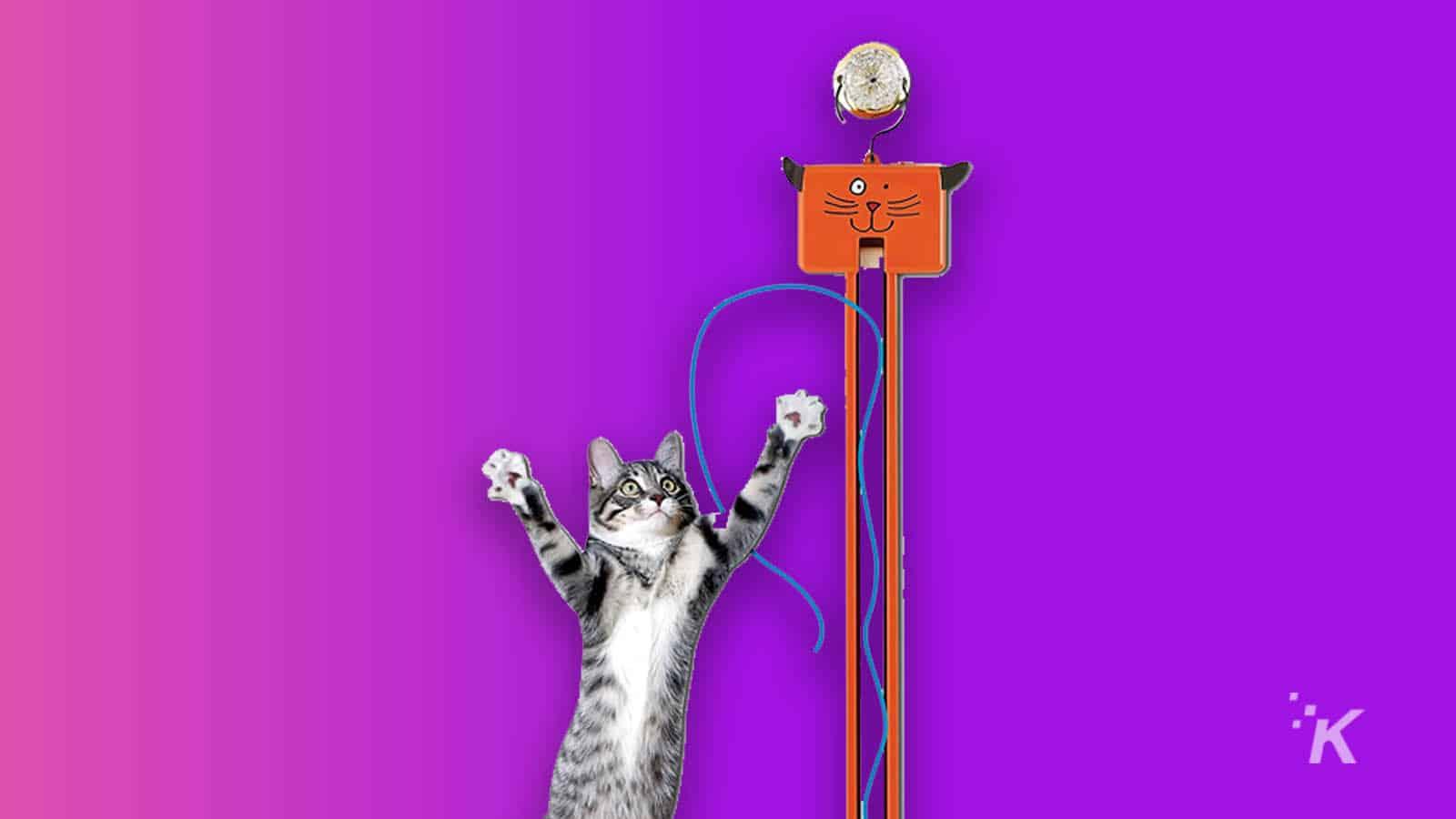 moody pet fling cat toy