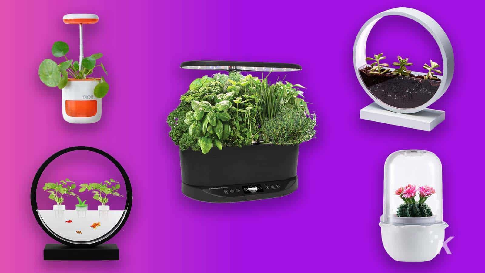 best indoor gardens