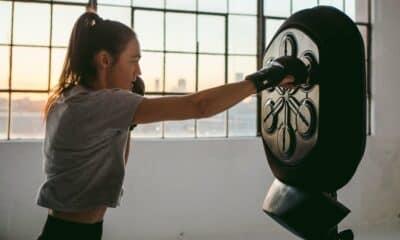 lieboxer home workout machine