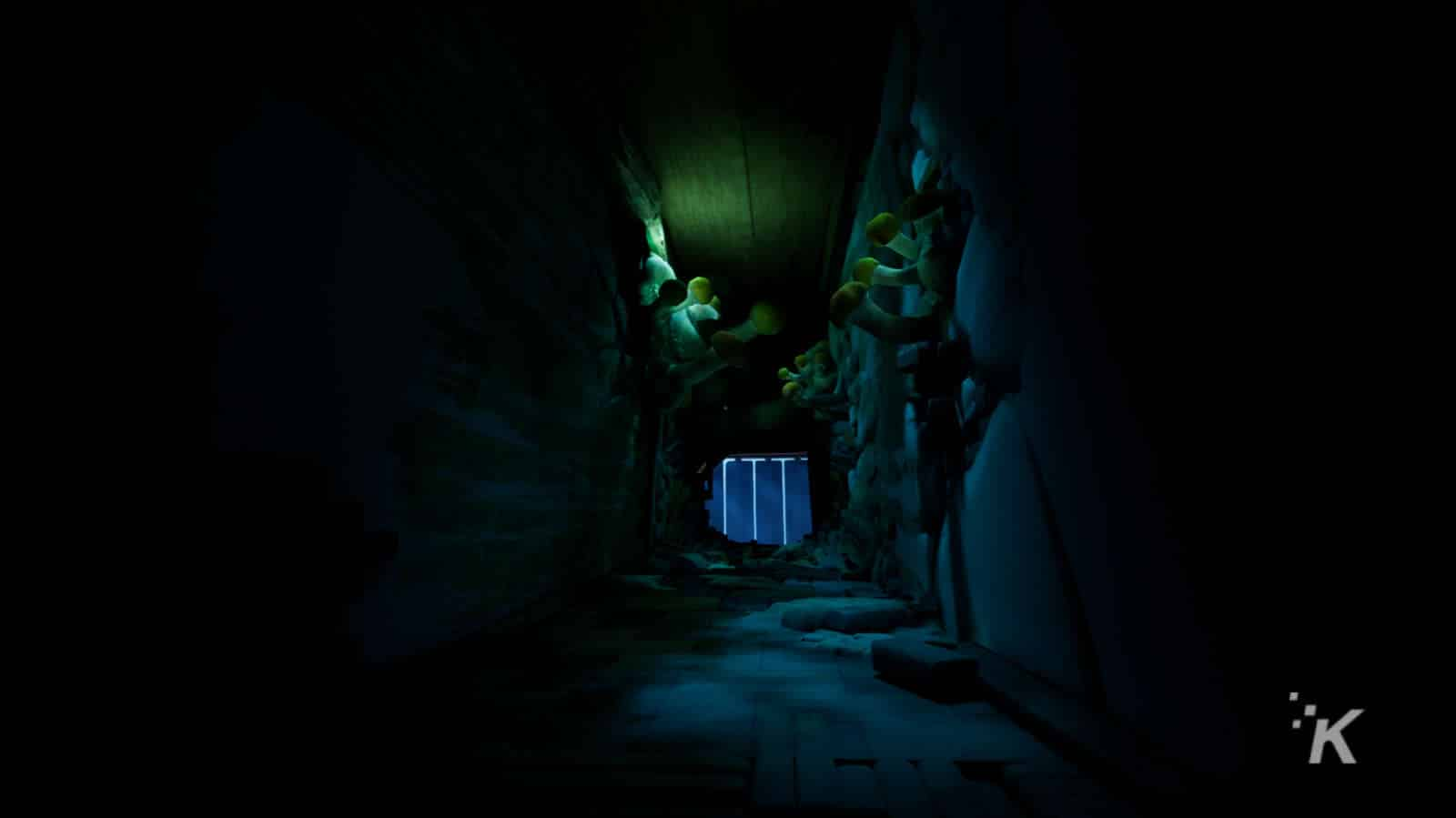 hallway in metamorphosis game