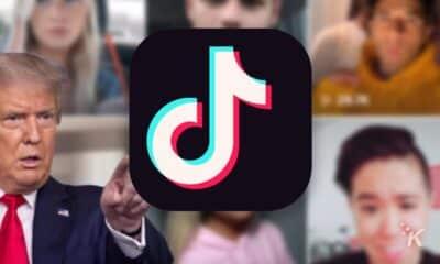 tiktok logo and pro-trump tiktokers