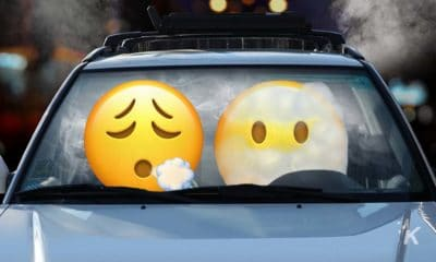 new emoji ios 14.5