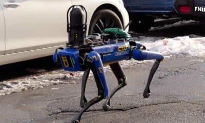 robotic dog called digidog