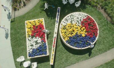 google io logo made up of flowerbeds