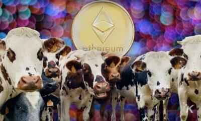 ethereum miners using cow poop