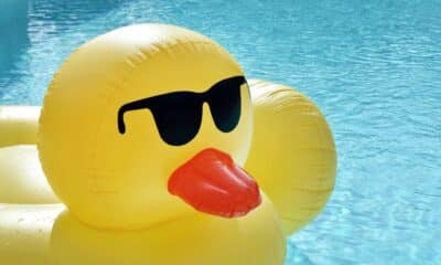 swimming pool with rubber duck