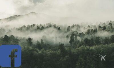 facebook marketplace amazon rain forest